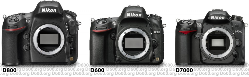 Nikon D600 vs D800 vs D7000 size comparison
