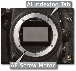 Nikon D600 AF Motor and AI-indexing Tab