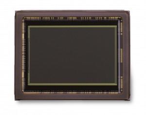 Nikon D600 sensor