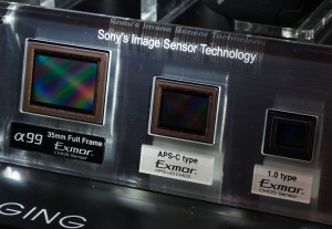 Sony A99 Sensor Display